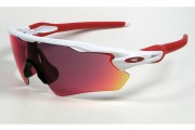 Oakley Radar EV Path polished white / PRIZM Road